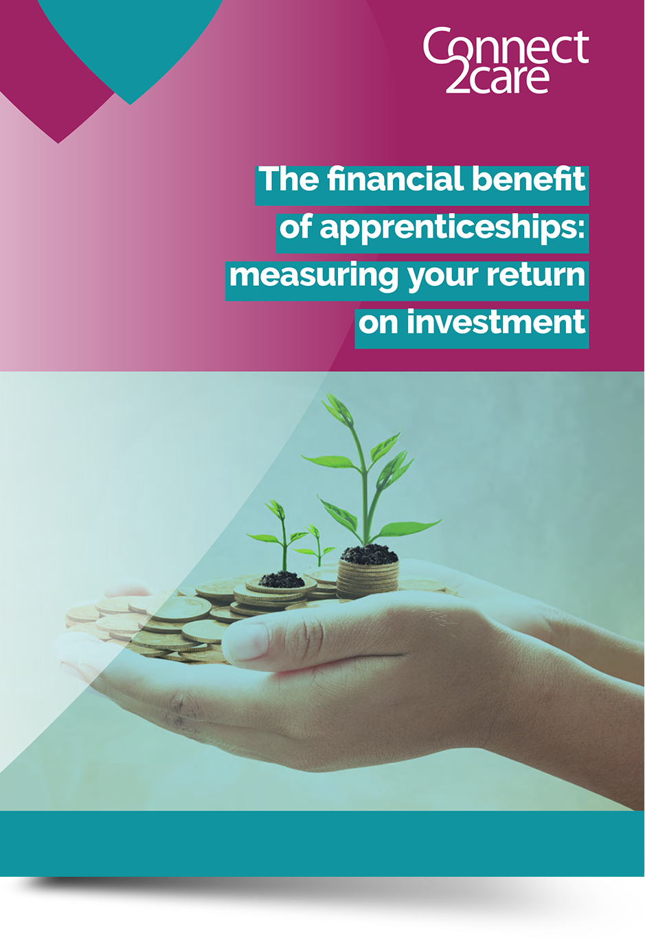 Front cover of return on investment guide